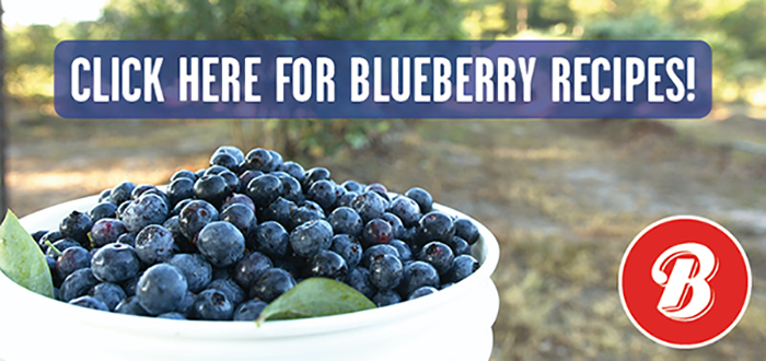 "An image of blueberries with the text "" Click here for blueberry recipes!"""